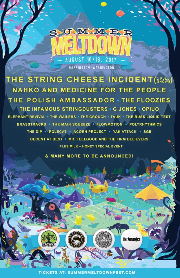 Summer Meltdown Festival 2017